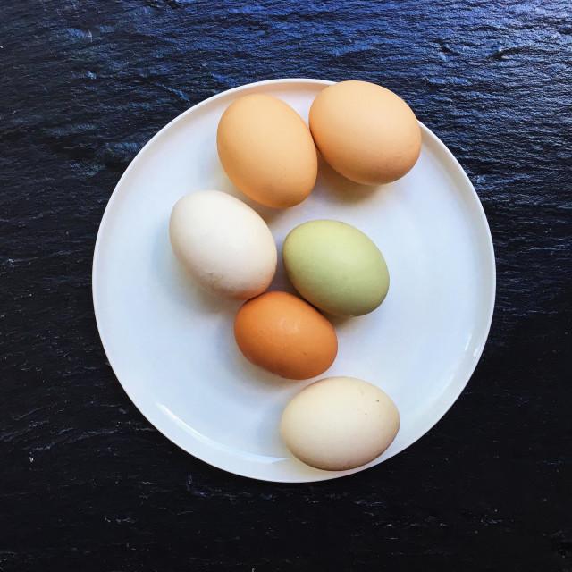 """Fresh Eggs"" stock image"