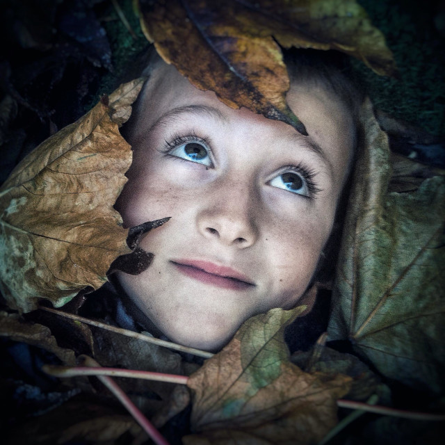 """""""Boy covered with autumn leaves"""" stock image"""