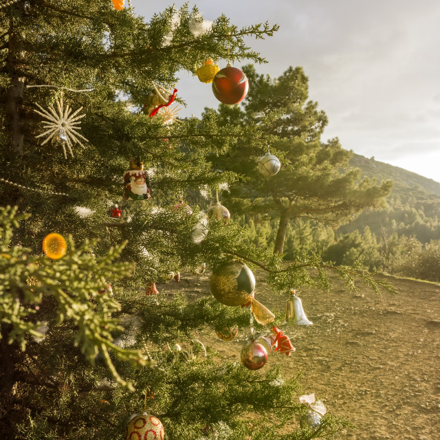 """Decorated Christmas tree in the forest"" stock image"