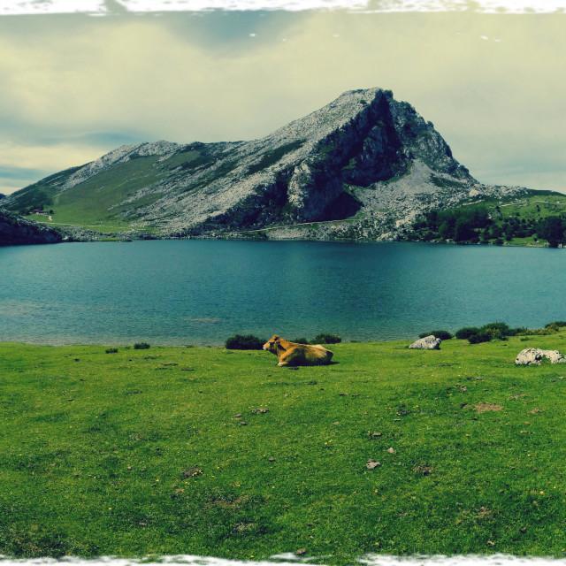 """View of Lake Enol (Lakes of Covadonga) in Asturias, Spain"" stock image"