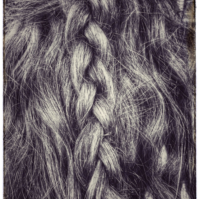 """Platted hair."" stock image"