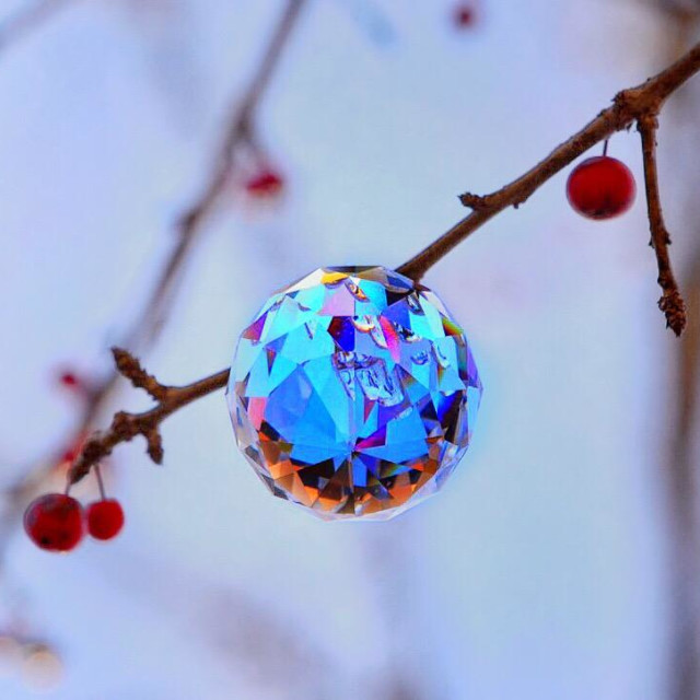 """""""Faceted crystal ball with wild holly berries/North Alabama/Alamy, US"""" stock image"""