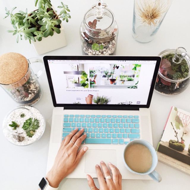 """""""Working on the Mac with a cup of coffee surrounded by terrariums with succulents and other living plants"""" stock image"""