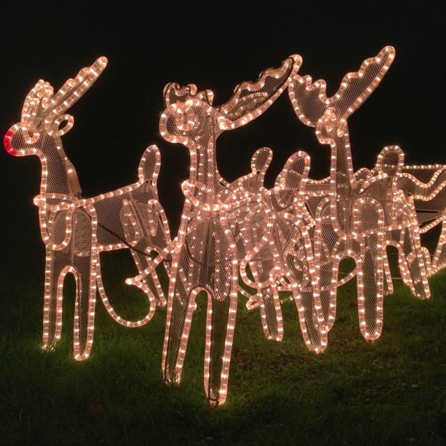 """""""Santa's Christmas reindeer and sleigh garden lights"""" stock image"""