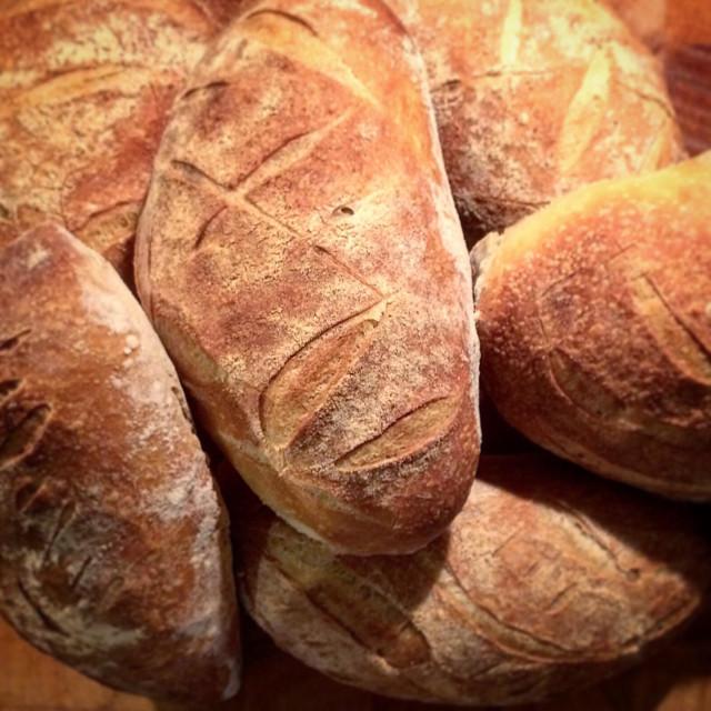 """Sourdough loaves"" stock image"