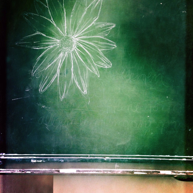 """Flower drawing on an old and used green chalkboard at a school"" stock image"