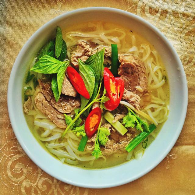 """Vietnamese beef noodle soup Pho"" stock image"