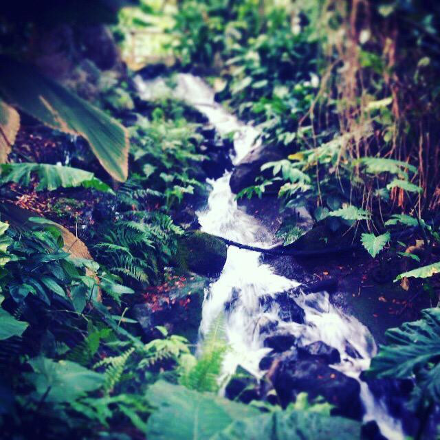 """""""Waterfall at the Eden Project"""" stock image"""
