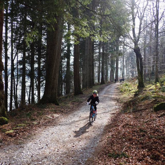 """""""A young girl cycles along the banks of Lake Windermere in the Lake District, UK"""" stock image"""