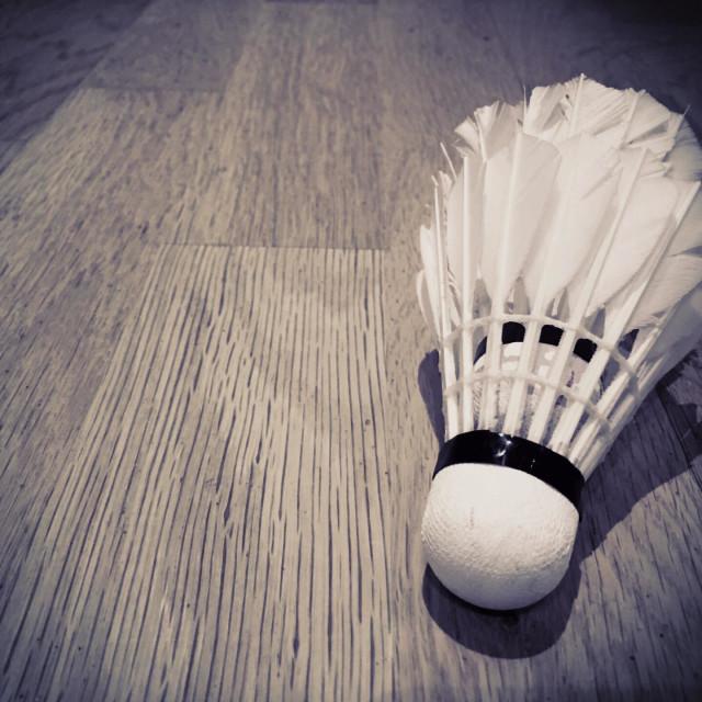 """""""Badminton"""" stock image"""