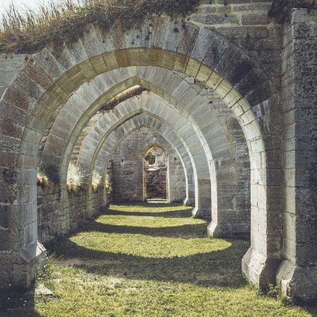 """""""Alvastra klosterruin old abbey ruins"""" stock image"""