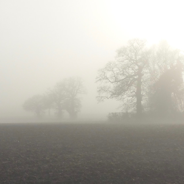 """Misty Suffolk morning"" stock image"