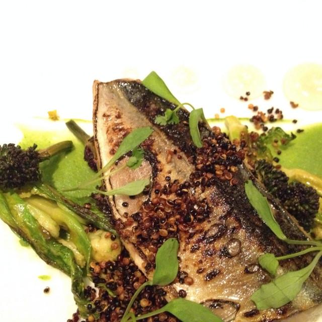 """Flamed mackerel and toasted quinoa"" stock image"