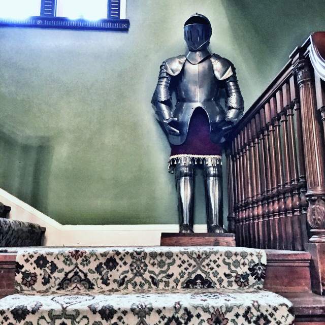"""Coat of armour on the stairs"" stock image"