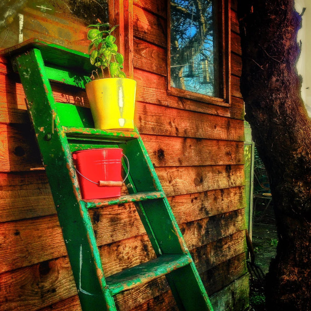 """""""The garden shed."""" stock image"""
