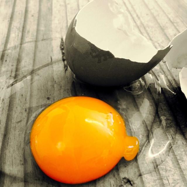 """Bright yellow egg yolk"" stock image"