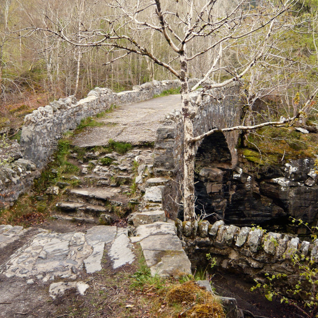 """Old bridge Near Loch Ness 1"" stock image"