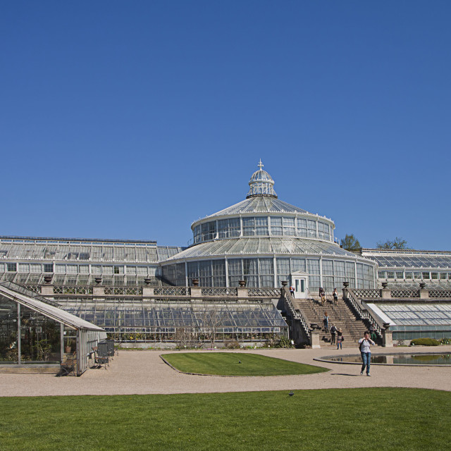 """Copenhagen, Denmark - the greenhouses at Botanical Garden"" stock image"
