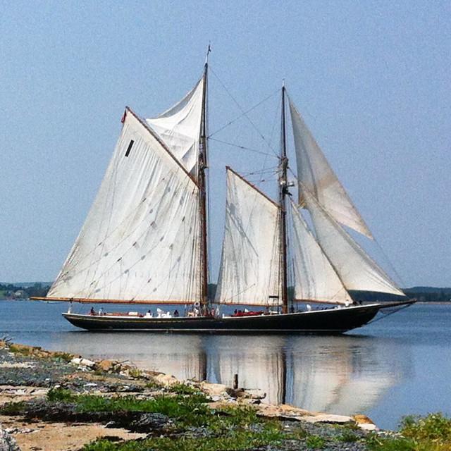 """""""Bluenose II schooner"""" stock image"""