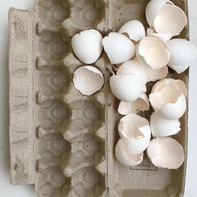 """A dozen egg shells"" stock image"