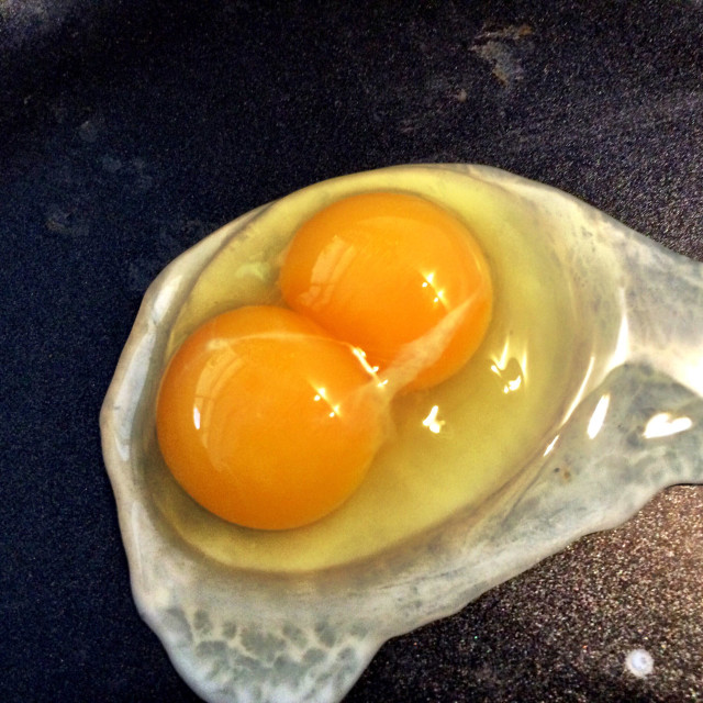 """""""Double yolk"""" stock image"""