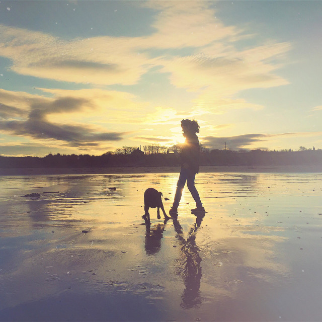 """""""Best friends and daydreams on the beach at sunset"""" stock image"""