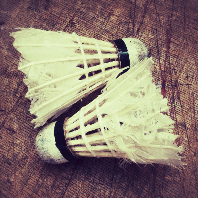 """Old feather badminton shuttlecocks"" stock image"