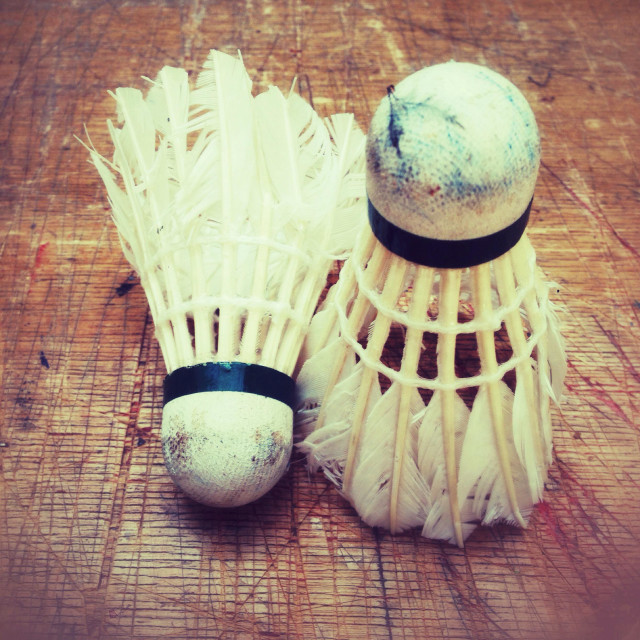 """Vintage badminton feather shuttlecocks"" stock image"