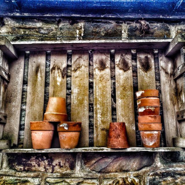 """""""Potting shed shelf"""" stock image"""