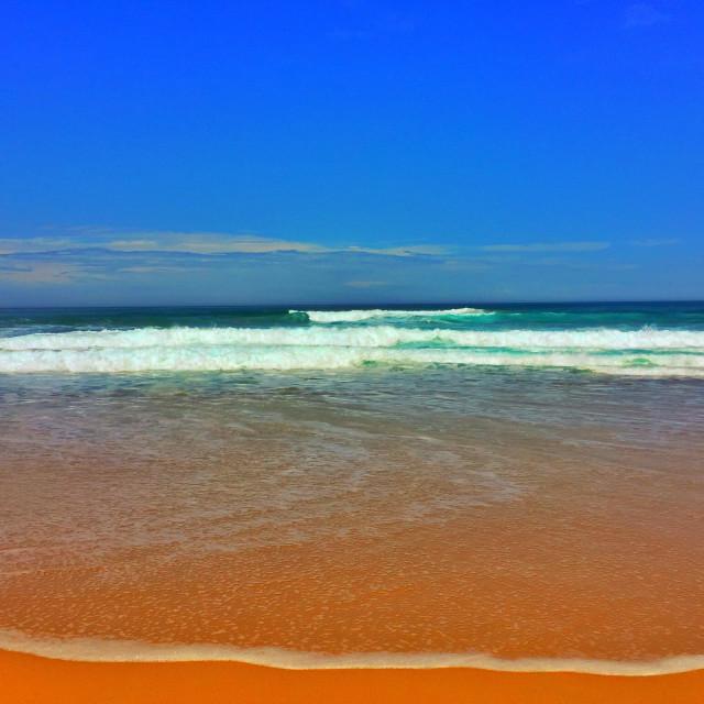 """""""Apollo Bay shore line, Victoria, Australia"""" stock image"""