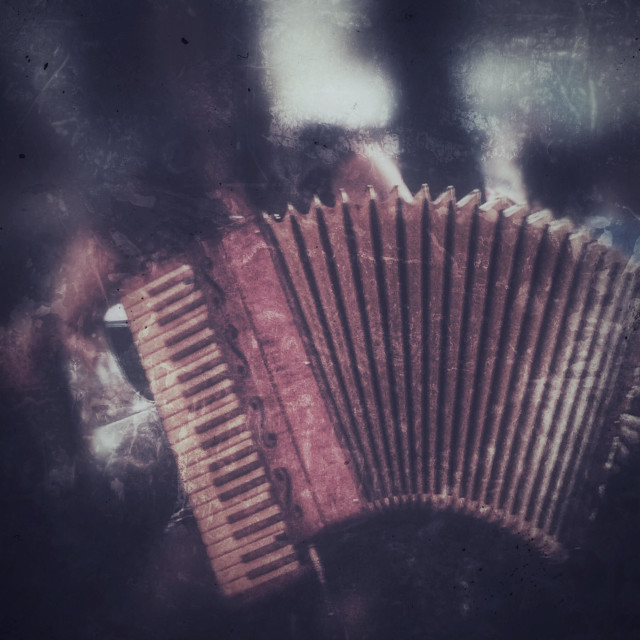 """Accordion"" stock image"