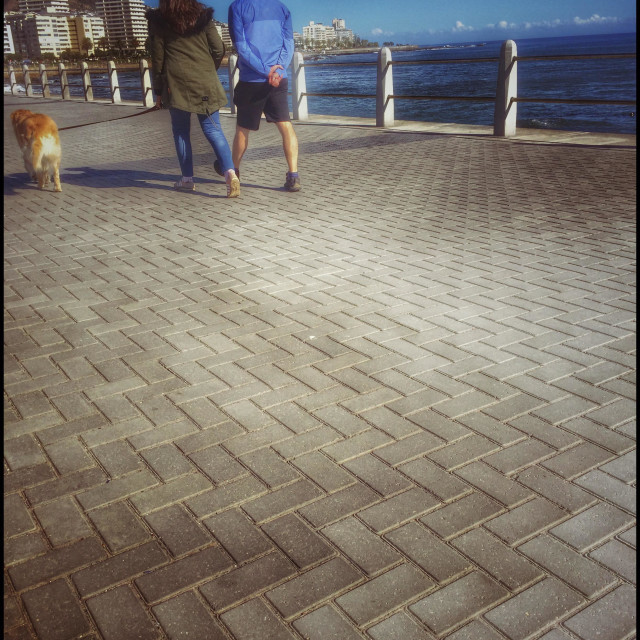 """""""Couple walking dog along Seapoint promenade, Cape Town."""" stock image"""