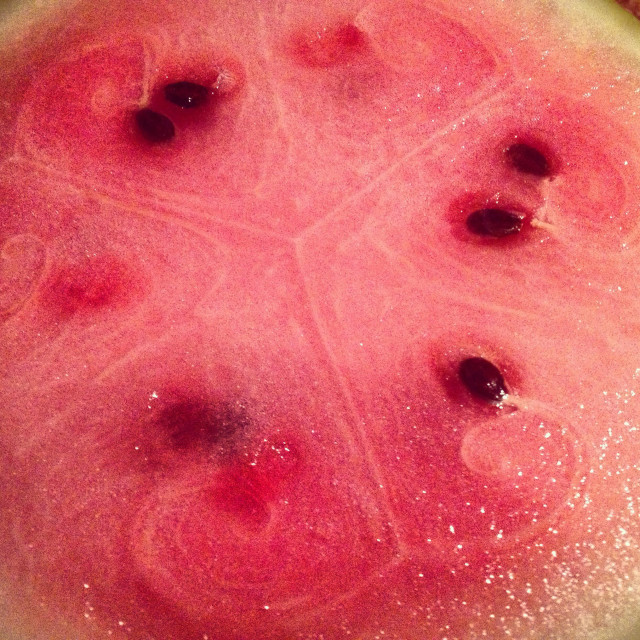 """""""The radial symmetry of a watermelon"""" stock image"""
