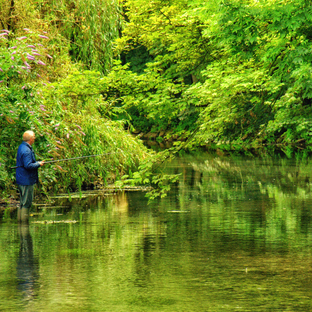 """Man fishing"" stock image"