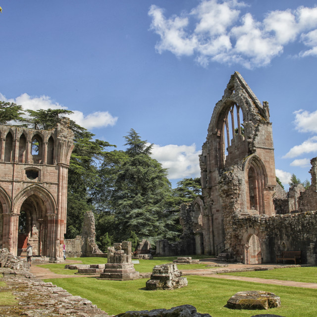 """Dryburgh abbey"" stock image"