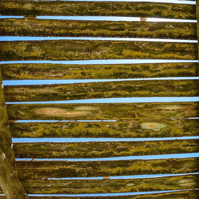 """Wooden slats"" stock image"