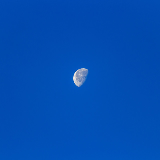"""""""moon during the day"""" stock image"""