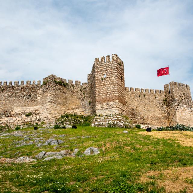 """Fortress at Selcuk"" stock image"