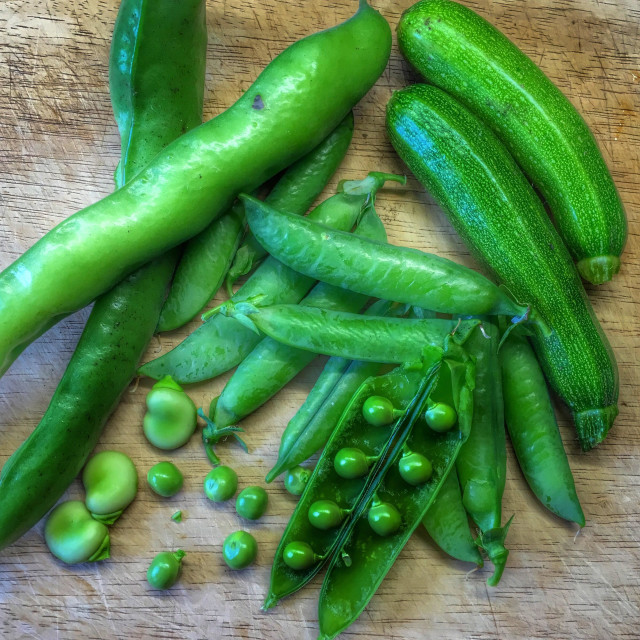 """Fresh peas courgettes and broad beans picked from the vegetable garden"" stock image"