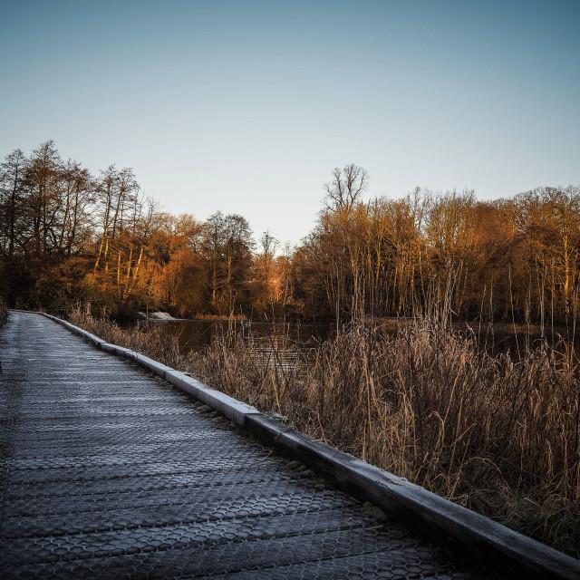 """Icy lake side path"" stock image"