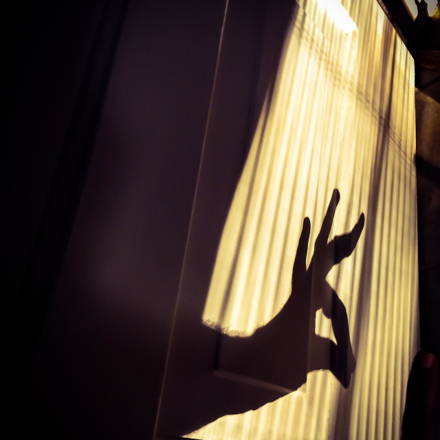 """A deer in hand shadow"" stock image"