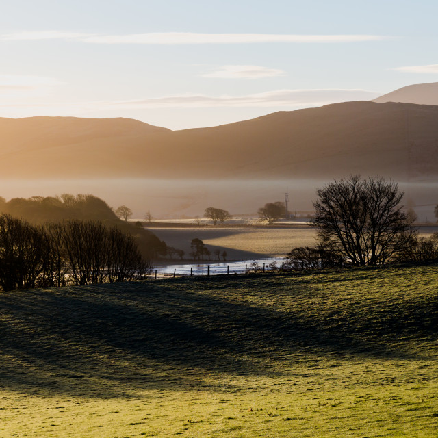 """Scottish hills in golden houres lights with mist and long trees"" stock image"