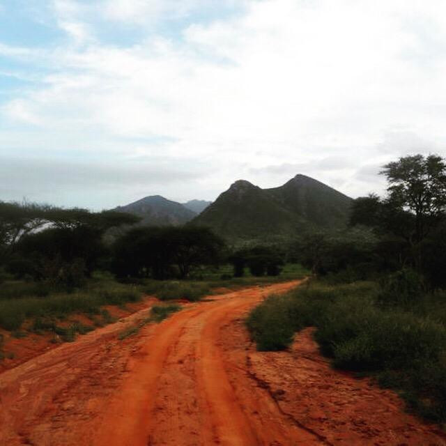 """Tsavo National Park, Kenya"" stock image"