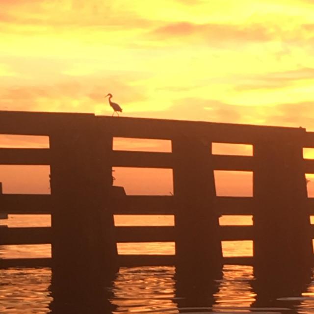 """""""Morning sunrise"""" stock image"""