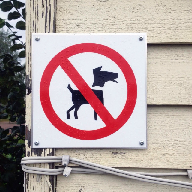 """No dogs allowed"" stock image"