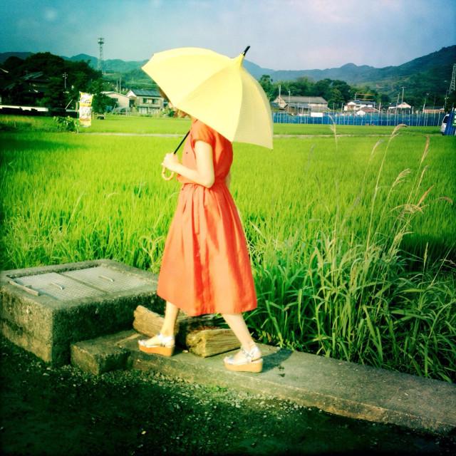 """A woman walks by the field in Asakusa, Fukuoka prefecture in Japan."" stock image"