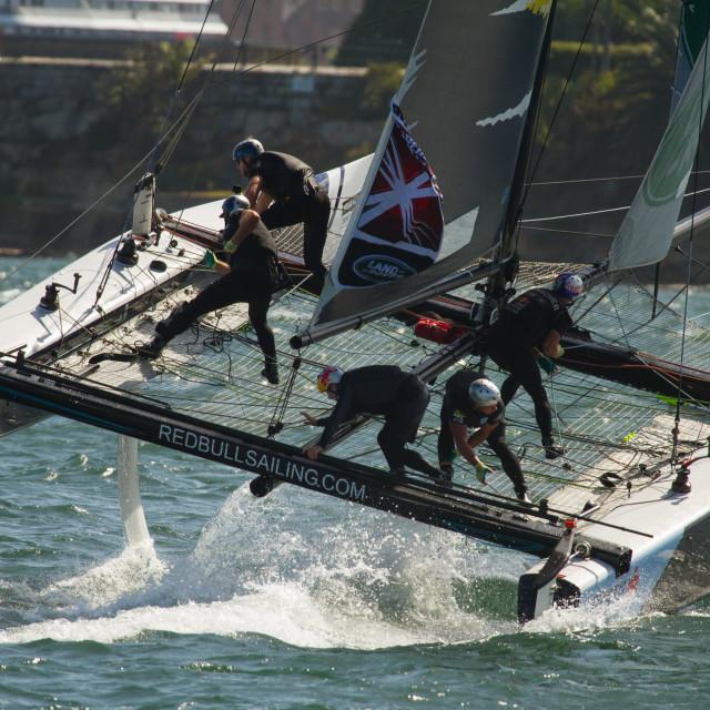 """GC32 Racing Catamaran Redbull on Sydney Harbour"" stock image"