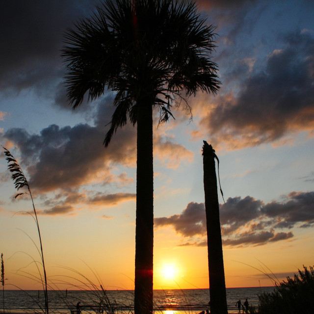 """""""Clearwater Beach"""" stock image"""