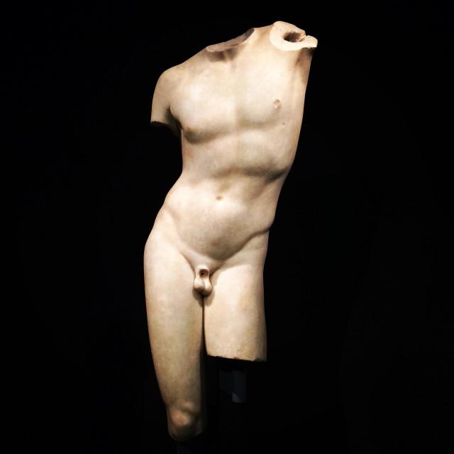 """Man torso"" stock image"