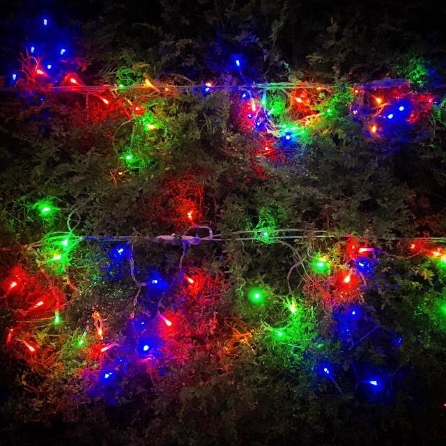 """""""Xmas Lights"""" stock image"""